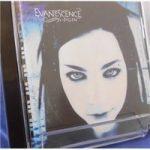 Fallen – Evanescence