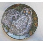 Vintage Wedgwood Bone China Baby Owls Dick Twinney Long-Eared Owl Chicks Plate