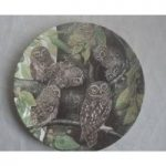 Vintage Wedgwood Bone China Safe In The Nest Dick Twinney Little Owl And Young Plate