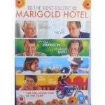THE BEST EXOTIC MARIGOLD HOTEL 12